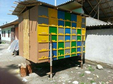 павильон для  пчелы. полностью утепленные павильон для 42 семьи. наход в Бишкек