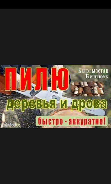 пилю деревья дрова любой сложности квалифицированные спецыолисты быстр в Бишкек