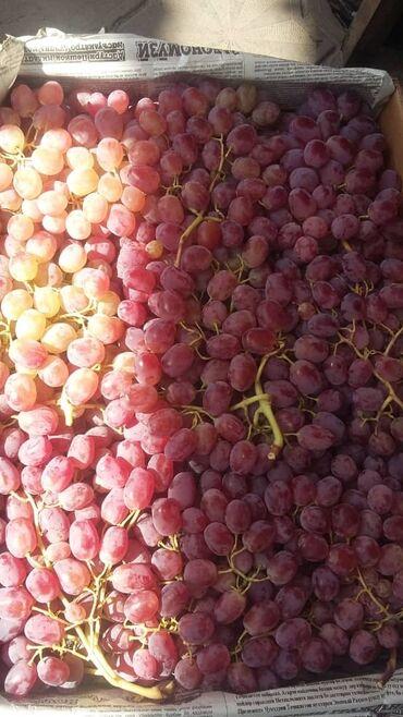 Овощи, фрукты - Кыргызстан: Под заказ виноград гранаты лимон айва и другие фрукты и овощи из