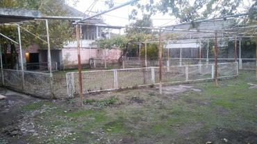 Sabirabad şəhərində - şəkil 7