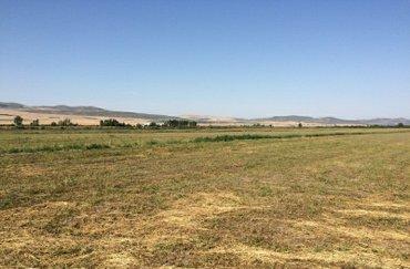 Xızı şəhərində Xizi rayon gilezi qesebesinde 5 hektar ekin sahesi satilir tecilidir.