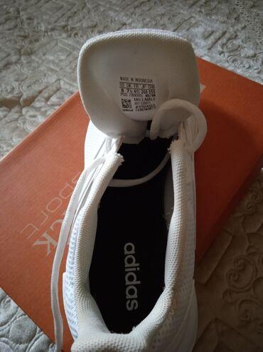 купить химчистку торнадо в бишкеке в Ак-Джол: Продаю кросовку от фирмы Адидас. Оригинал. Размер 41. Купил в Турции