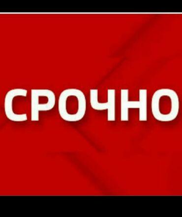 обучение трейдингу бишкек in Кыргызстан   ГРУЗОВЫЕ ПЕРЕВОЗКИ: Требуется парни в отдел продаж. Возраст от 20 и выше! Можно без опыта