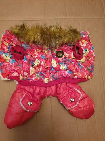 домик для маленькой собаки в Азербайджан: Одежда для собак, утепленная с воротником. Длина спинки 31 см., объем