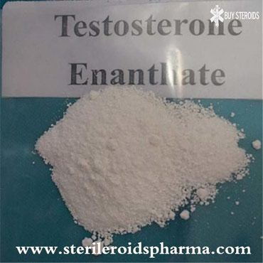 98%+ Purity HPLC Testosterone Enanthate Raw Powder from σε Kythnos