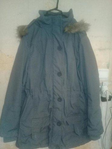 kurtqalar - Azərbaycan: Kiwi ucun kurtqa 9 azn teze kimidir