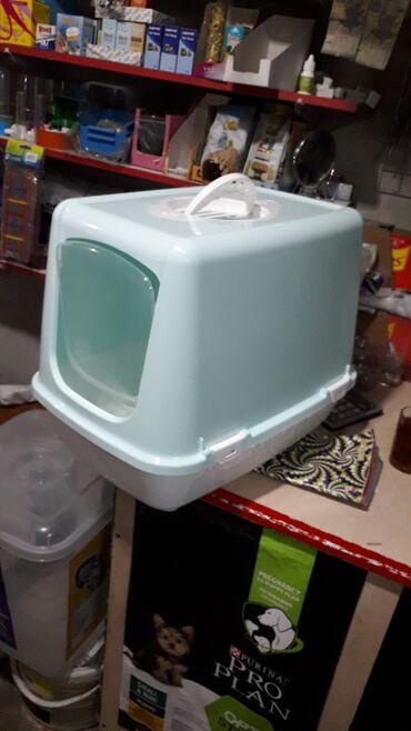 Bio tualet 29 azn. Turkiye istehsali filterli. Qumlarimizda var 10 kq
