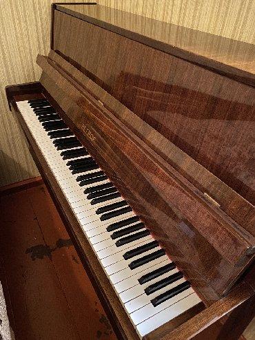 aro 24 2 1 td - Azərbaycan: Petrof 1958 ci il mükafatlı piano.Yaxşı vəziyyətdədir.Çox