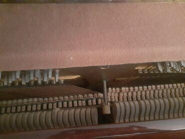 Musiqi alətləri - Şəki: Piano və fortepianolar