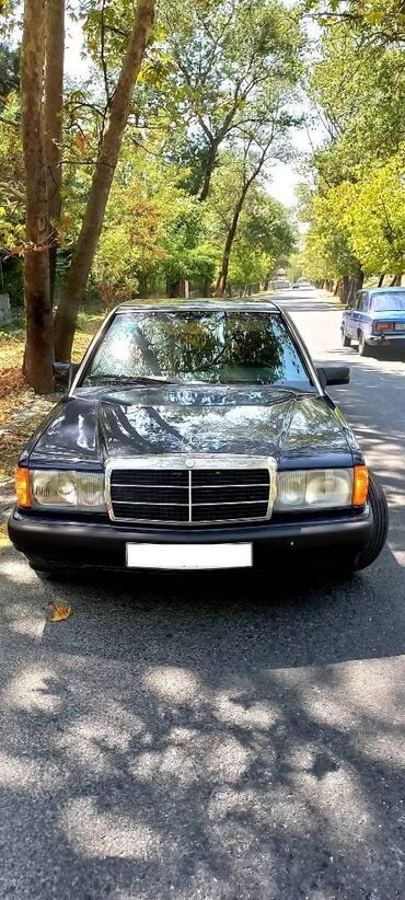 100 elan | NƏQLIYYAT: Mercedes-Benz 190 2 l. 1990 | 250000 km