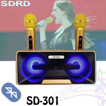 Семейное Караоке система на два микрофон Беспроводная стерео караоке