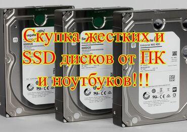 Жесткие диски, переносные винчестеры - Кыргызстан: Скупка жёстких и Ssd дисков. От ПК, ноутбуков и т.д. Приятные цены!