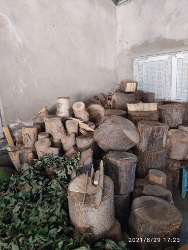 1492 объявлений: Продаю сухие дрова,не колотые,тополь.(самовывоз). 8 кубов - 14000(