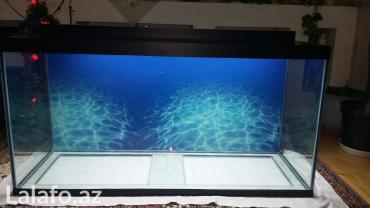 Bakı şəhərində Teze hazirlanip 325 litrelik akvarium 10mll wuwenin qalinliqi qapaqi- şəkil 3