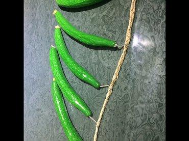 Огурец.Декоративная нитка с зелеными в Бишкек