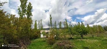 alpine a610 3 mt в Кыргызстан: Продам Дом 43 кв. м, 3 комнаты
