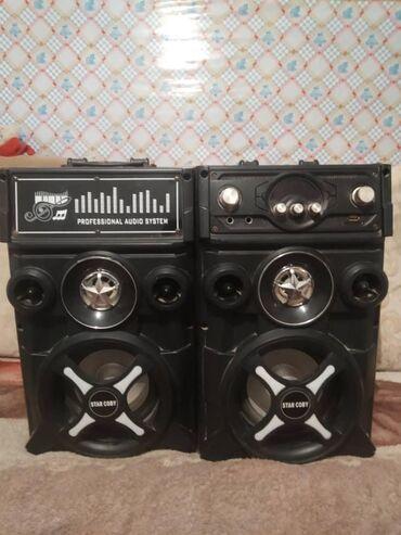 professional mikrofon в Кыргызстан: 2 Колонки professional audio system
