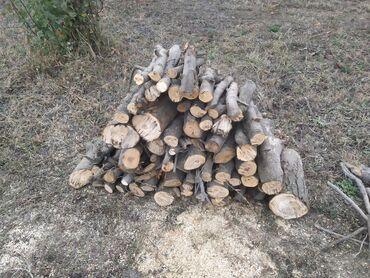 Kömür, odun - Azərbaycan: Odun satılır