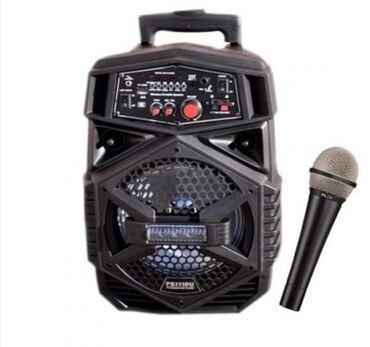 Studijski mikrofoni | Srbija: Zvučnik karaoke FEIYIPU ES-4000A - NOVO6100 din.Jačina 300WZvučnik