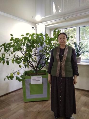 ручная работа ободки в Кыргызстан: Койнок Ручная работа  Чыптама