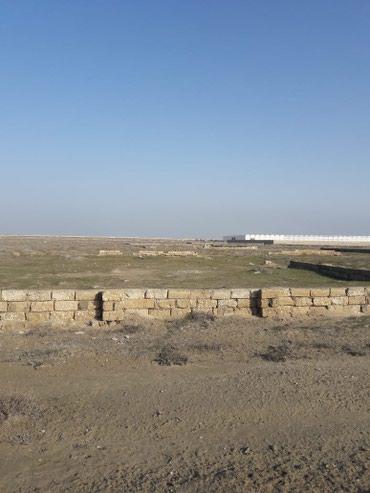 Torpaq - Azərbaycan: Satılır 6 sot Kənd təsərrüfatı