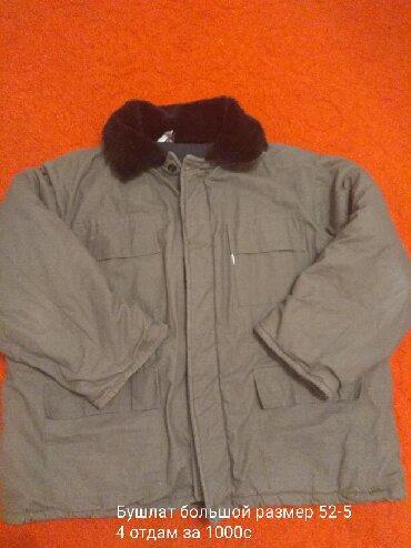 Мужские куртки в Кыргызстан: Бушлат новый 100%хлопок большой размер 54-56 Отдам за 499с р-н Орто