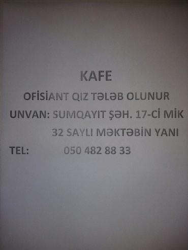 Xırdalan şəhərində Çay evinə ofisiant qız tələb olunur.