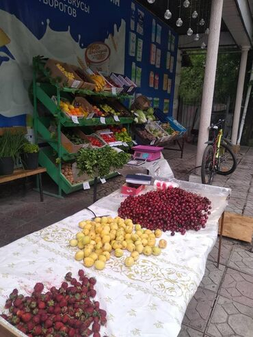Сниму овощной магазин в центр города