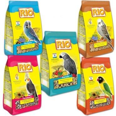 корм для попугаев со всеми витаминами в Бишкек