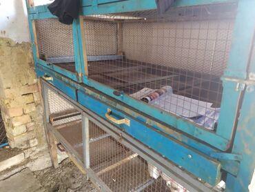 Зоотовары - Кыргызстан: Продаю клетку для цыплят, состояние хорошее