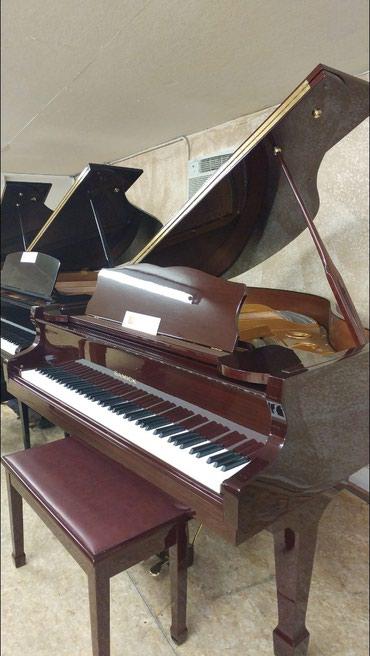 Bakı şəhərində Sifariş pianist