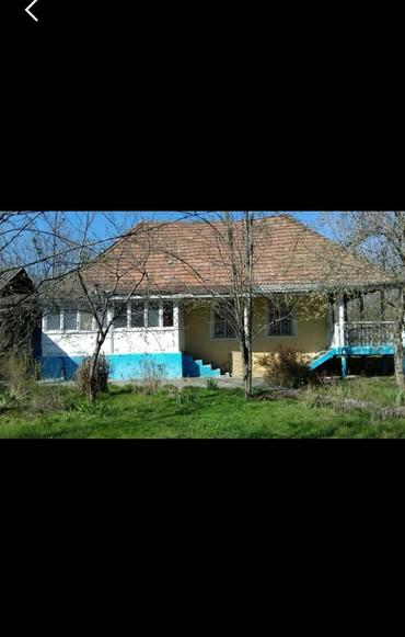 saftali-bagi - Azərbaycan: Satış 39 sot