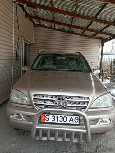 Mercedes-Benz ML 320 3.2 л. 2002 | 140000 км