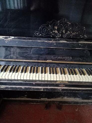 İdman və hobbi Tovuzda: Pianina satiram