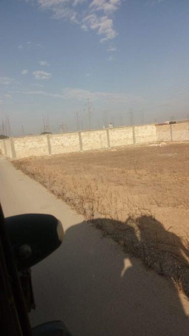 Bakı şəhərində Torpaq ucuz