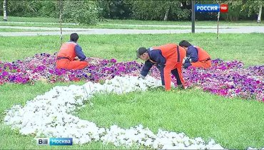 Требуются садовники  в Бишкек