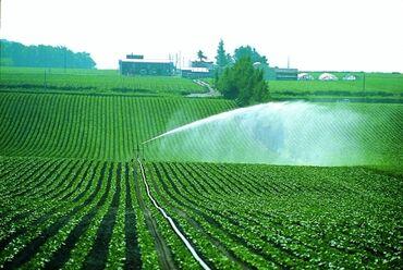 Сдам в аренду - Кыргызстан: Сдам в аренду соток Для сельского хозяйства от собственника