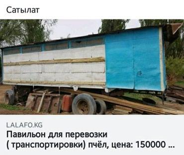 Продаю павильон для (ПЧЕЛОВОДСТВО)   в Кочкор