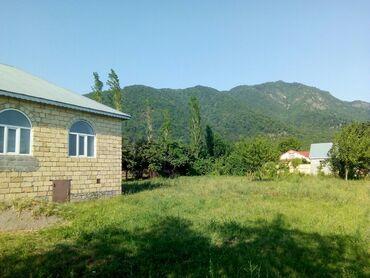 buynuz - Azərbaycan: Ismayilli rayonu Buynuz kendinde ev satilir 45000azn.6sot