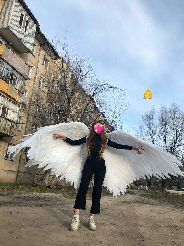 Услуги - Токмок: Крылья ручной работы,размах крыльев 3метра, длина крыльев 1,5 метра
