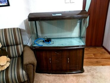 Разумный Торг уместен ! Продаю аквариум большой в хорошем состоянии