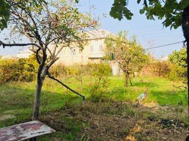 Sumqayıt şəhərində Sumqayitda bag evi satiram yeni tikilib qaz su isiq çekilib. Kart sist