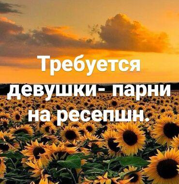 Поиск сотрудников (вакансии) - Кыргызстан: Менеджер по продажам. До 1 года опыта. 5/2. Филармония