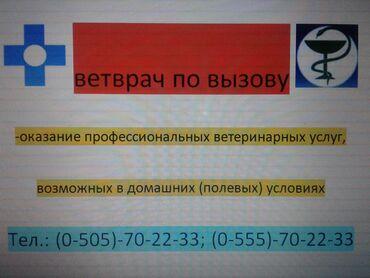 болезни животных в Кыргызстан: Ветеринар по вызову. Ветеринарные услуги. Ветврач-профессионал.Услуги