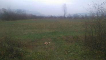 Prodajem plac u Požegi, 50 ari, naselje Tatojevica. 2km od centra - Belgrade
