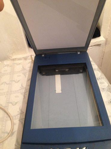 сканер mustek scanexpress a3 usb в Кыргызстан: Сканер рабочий шнура нету 1000сом