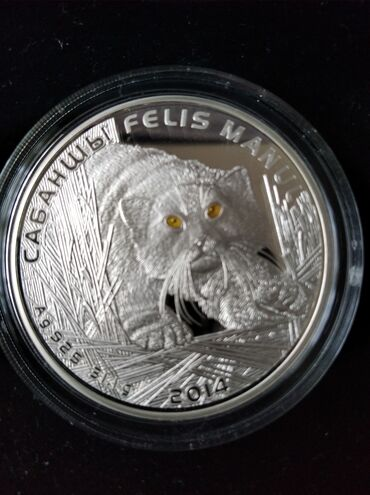 Спорт и хобби - Кок-Ой: Манул монета серебро 31.1гр .красная книга