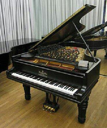 пианино-чайка в Кыргызстан: Куплю рояль для себя, не дорого