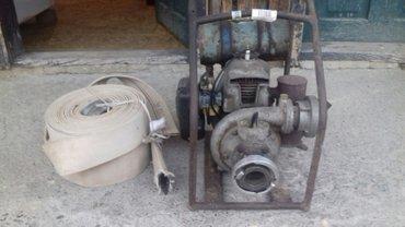 Tomos pumpa +30m creva 50e - Kragujevac