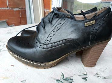 Cipele zenske differente. br.39,gaziste 25 cm stikla 8 cm,napred1,5 cm - Nis